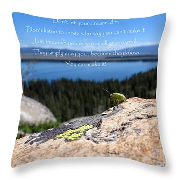 Throw Pillow featuring the photograph You Can Make It. Inspiration Point by Ausra Huntington nee Paulauskaite