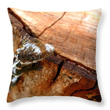 Throw Pillow featuring the photograph You Can See Me? by Greg Allore