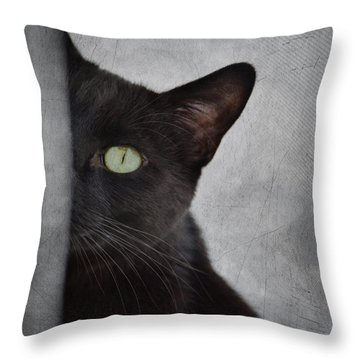 You Can't See Me Throw Pillow by Diane Alexander