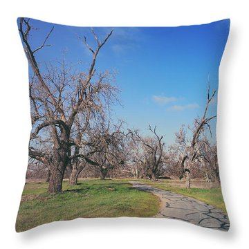 You Gave Me A Reason Throw Pillow by Laurie Search