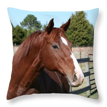 You Got My Attention Throw Pillow