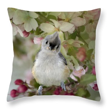 You Gotta Love Me Throw Pillow by Betty LaRue
