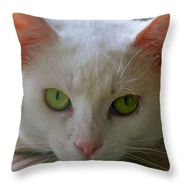 Throw Pillow featuring the photograph You Lookin At Me by Sherman Perry