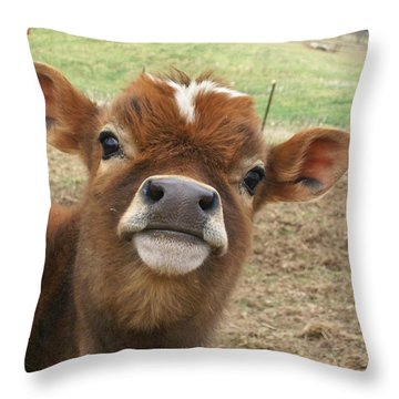 Throw Pillow featuring the photograph You Looking At Me by Sara  Raber