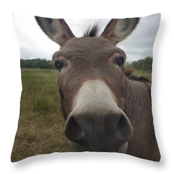 You Looking At My Woman Throw Pillow by Peter Piatt