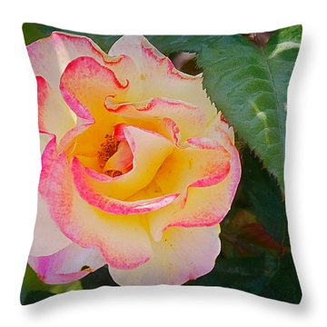 You Love The Roses - So Do I Throw Pillow by Christine Till