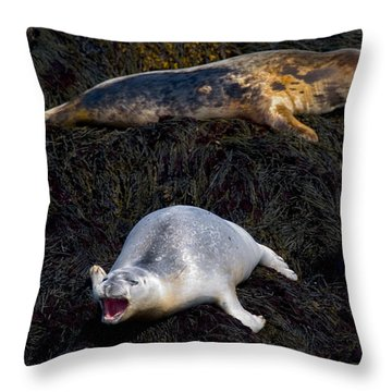 You Never Listen 5623 Throw Pillow by Brent L Ander