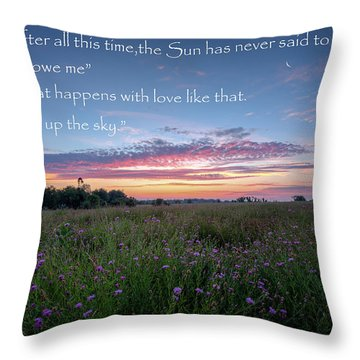 You Owe Me Throw Pillow by Bill Wakeley
