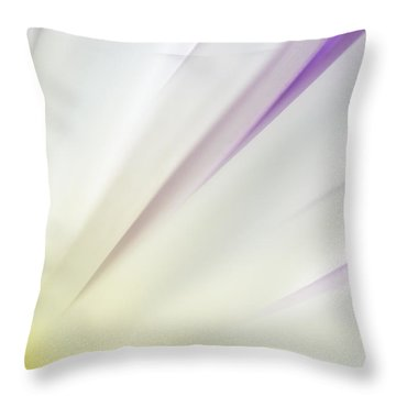 You Smiled...  And The Sun Came Out Throw Pillow