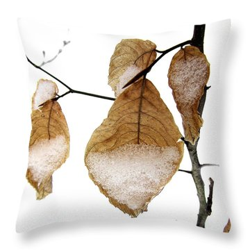 Young Beech Leaves In The Snow Throw Pillow by Louise Kumpf