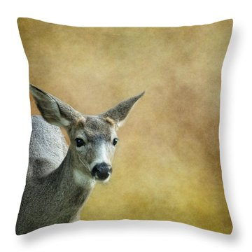 Throw Pillow featuring the photograph Young Buck by Belinda Greb