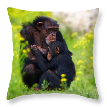Young Chimpanzee With Adult - II Throw Pillow