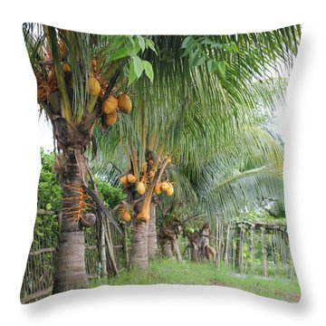 Young Coconut Trees Throw Pillow by Cyril Maza