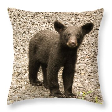 Young Cub Throw Pillow