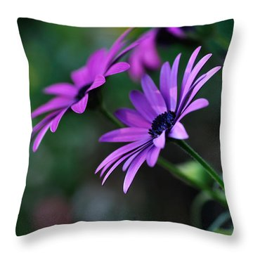 Young Daisies Throw Pillow by Kaye Menner