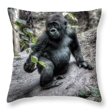 Young Gorilla Throw Pillow