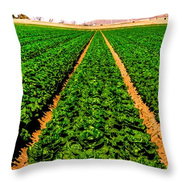 Young Lettuce Throw Pillow by Robert Bales