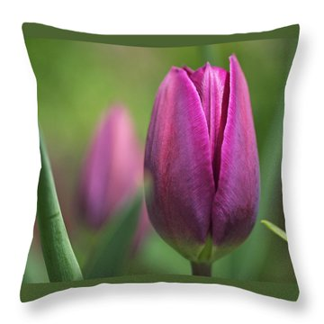 Young Purple Tulips Throw Pillow by Rona Black