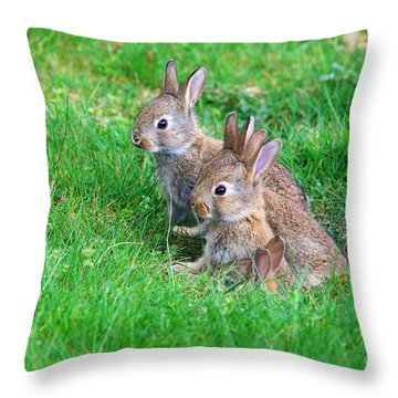 Throw Pillow featuring the photograph Young Rabbits by Nick  Biemans