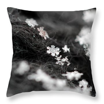 Young Snowflake Throw Pillow by Stacey Zimmerman