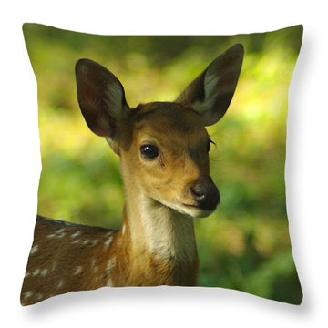 Young Spotted Deer Throw Pillow