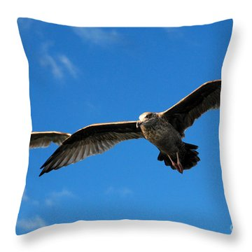 Young Wings Throw Pillow