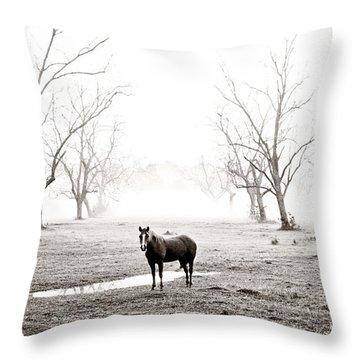 Your Morning Joe Throw Pillow by Scott Pellegrin