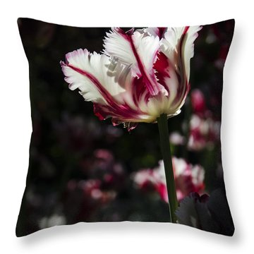 You're The Only One I See Throw Pillow