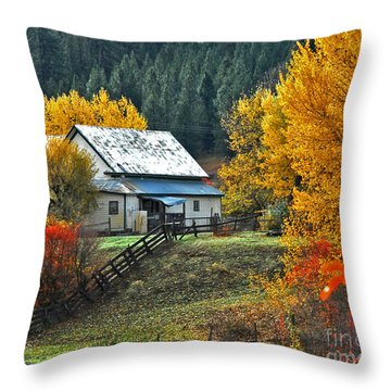 Yourn Barn Throw Pillow