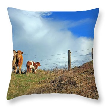 Youth In Defiance Throw Pillow