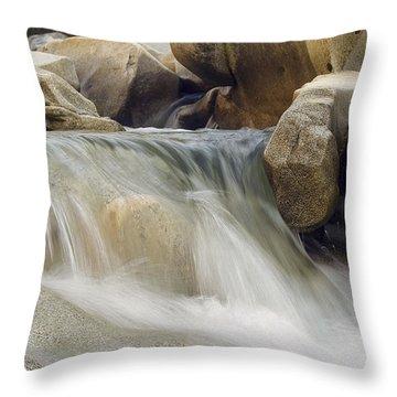 Anglin Throw Pillows