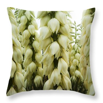 Throw Pillow featuring the photograph Yucca Forest by Steven Milner