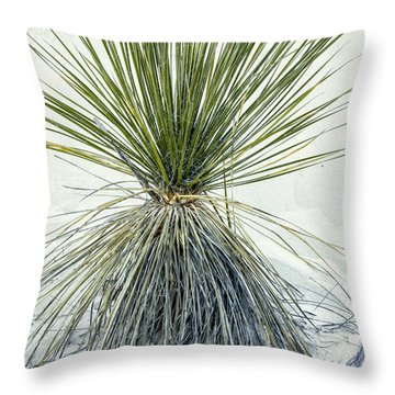 Yucca Sand Mound Throw Pillow