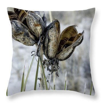 Yucca Seed Pods Throw Pillow