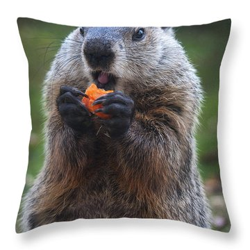 Yum-yum Throw Pillow