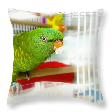 Throw Pillow featuring the photograph Yummy Dinner Time 001 by Kevin Chippindall