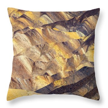 Zabriskie Color Throw Pillow