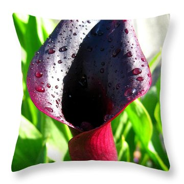 Zantedeschia Named Black Forest Throw Pillow by J McCombie