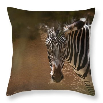 Throw Pillow featuring the photograph Zebra by Ivete Basso Photography