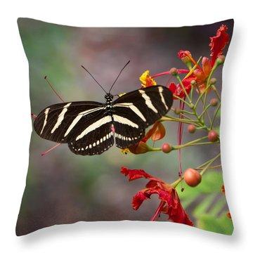 Zebra Longwing Butterfly Throw Pillow