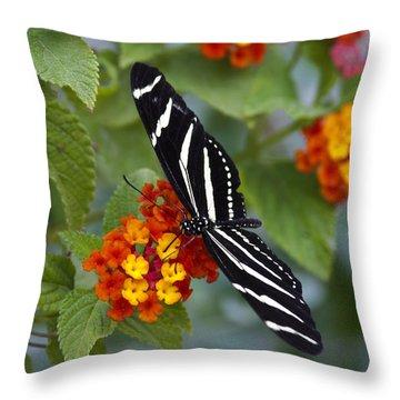 Zebra Longwing On Lantana Throw Pillow by Saija  Lehtonen