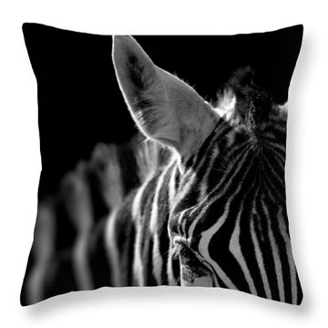 Portrait Of Zebra In Black And White Throw Pillow