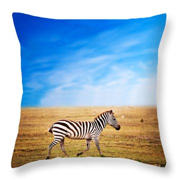 Zebra On African Savanna. Throw Pillow by Michal Bednarek