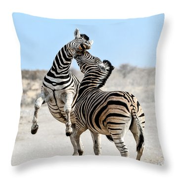 Zebra Stallions Fighting In Etosha Np Throw Pillow