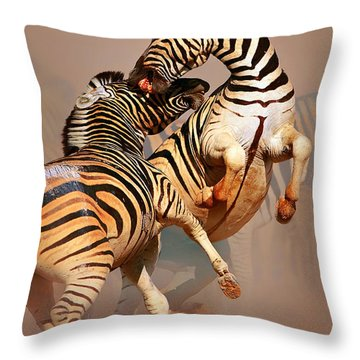 Zebras Fighting Throw Pillow