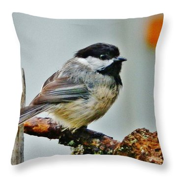Zen Chickadee Throw Pillow