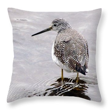 Throw Pillow featuring the photograph Zen Moment by I'ina Van Lawick