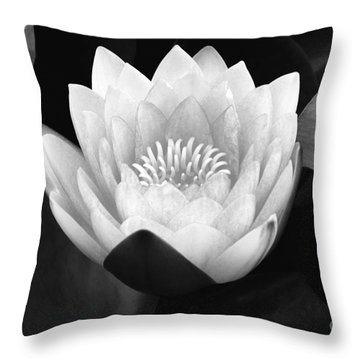 Throw Pillow featuring the photograph Waterlily Rising  by John F Tsumas