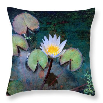 Throw Pillow featuring the photograph Zenful by John Rivera