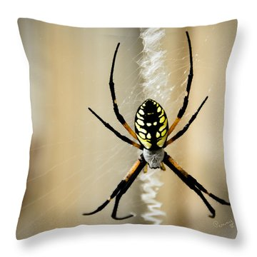 Zig Zag Is More Fun Throw Pillow by Penny Lisowski